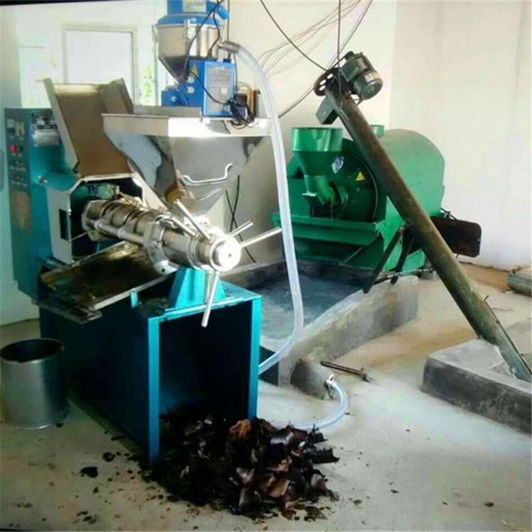 全自动菜籽榨油机设备 大型花生螺旋榨油机 厂家负责技术安装指导