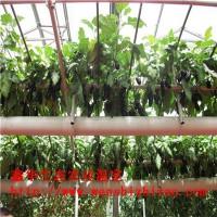跨境批发直销 阳台水培无土栽培设备 水培海绵 漏窗栽培种植